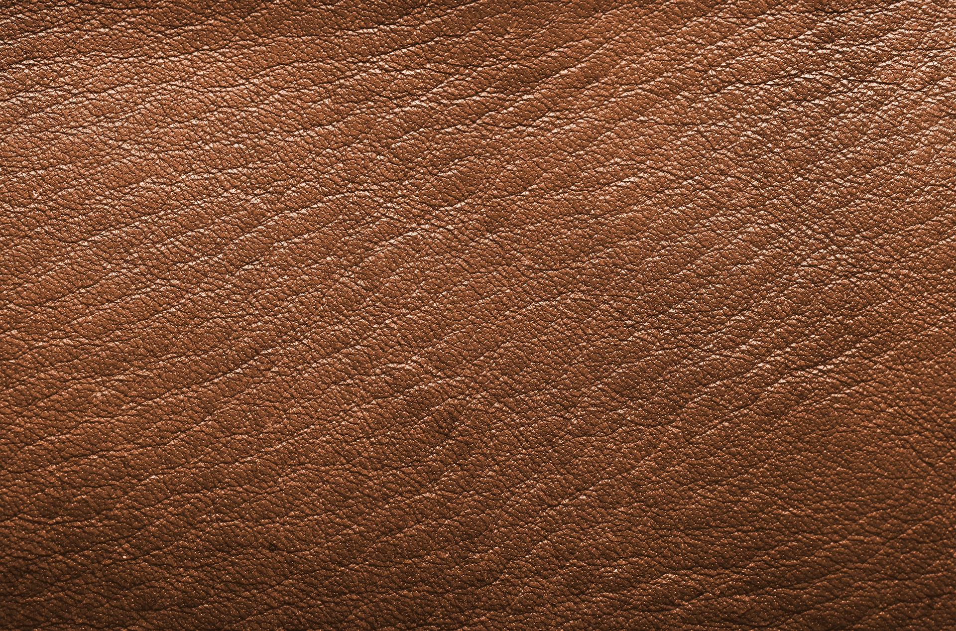 leather and upholstery cleaning truckee Lake Tahoe area